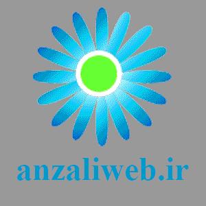 لوگوی مشتریان طراحی سایت انزلی وب